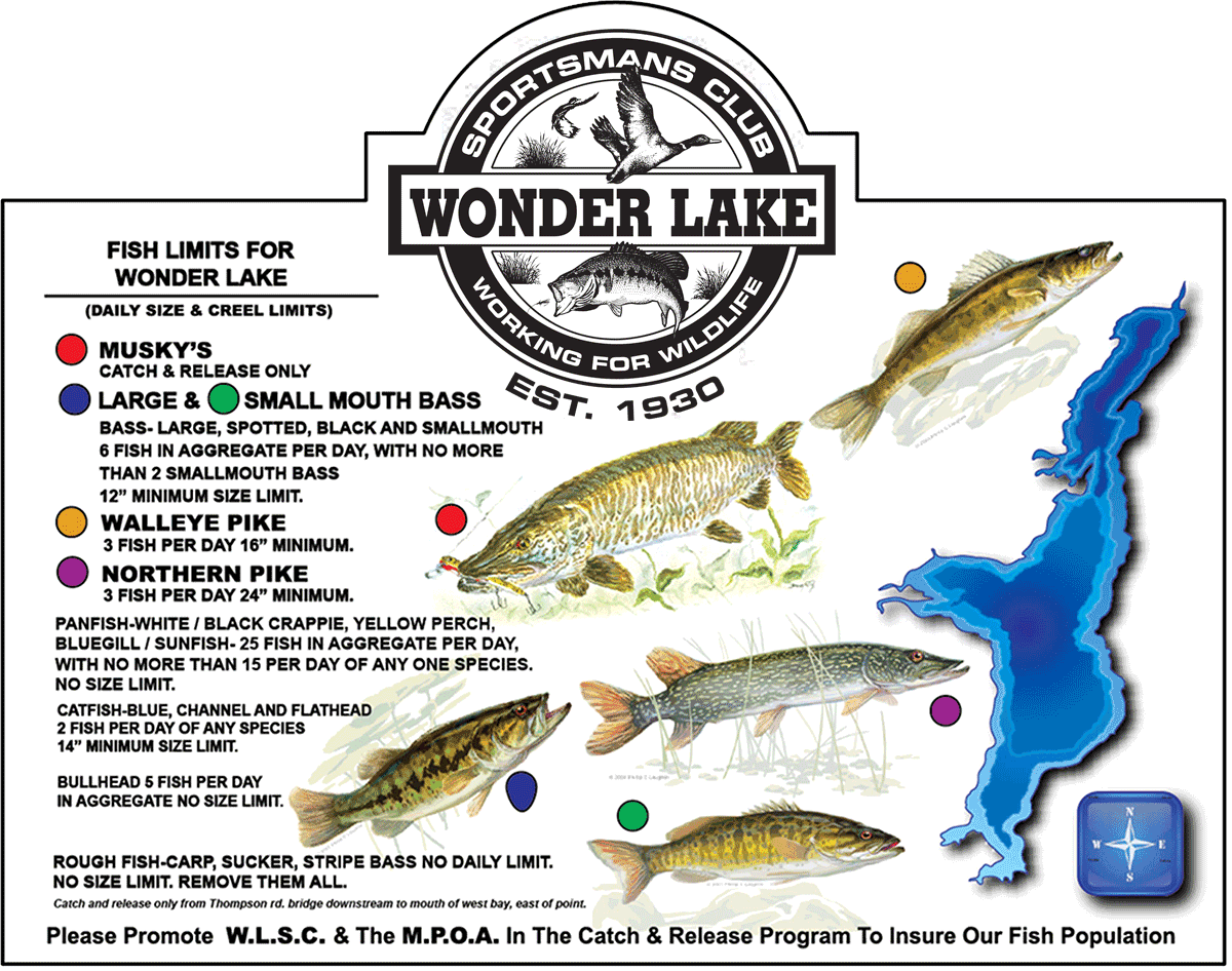 Mpoa fishing regulations official website of the wonder for Fish size limits